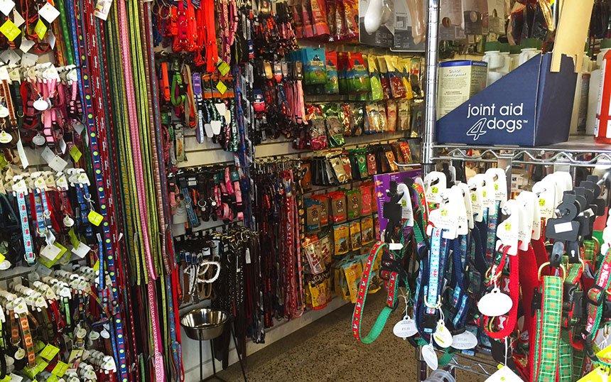 Door-County-Dog-Store-pets