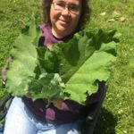 Join Herbalist Joanne Bauman at Junction Center Yoga Studio