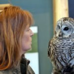 """Hunters of the Sky"" at Kress Pavilion on Saturday, April 21"