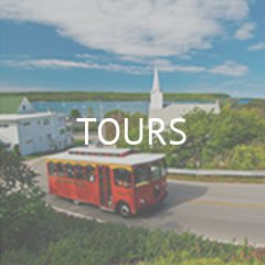 home-top-image-link-tours